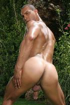 Gay Porn Star Profiles at CockSuckersGuide.com