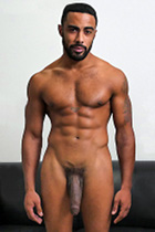 Stallion  at StraightPornStuds.com