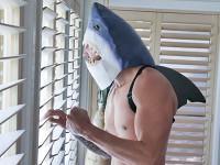 Shark Attack Exxxtra Small