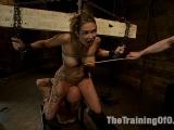 Finally Rain DeGrey The Training of O
