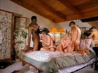 Rare Vintage Porn Classic Porn Scenes