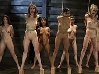 Seven Slave Intake The Training of O